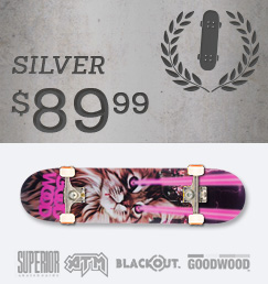 Build Your Own Skateboard Complete Silver