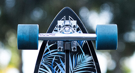 Z-Flex Longboards