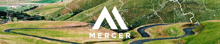 Mercer Skateboards, Longboards, & Cruisers