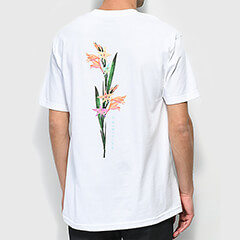 Men's Sale Tees